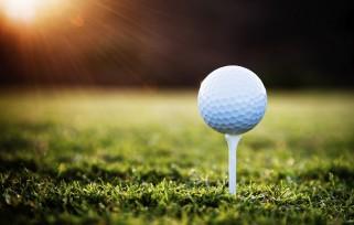 GO-GolfBallTee