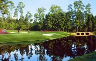 GO-Ocala-Golf-Hole 11crop