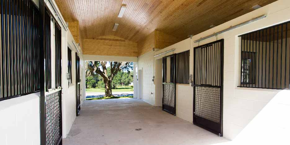What Does Golden Ocala Offer To The Horse Enthusiast