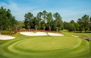 Experience what a perfect day can be at Golden Ocala