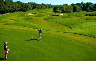 Golfing on Golden Ocala Golf Course