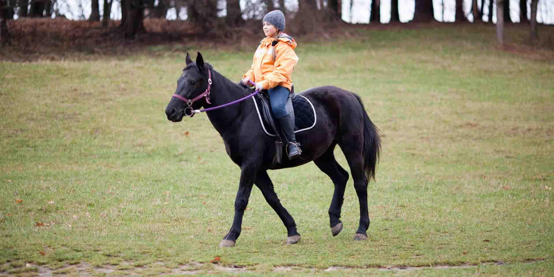 Girl riding a horse.