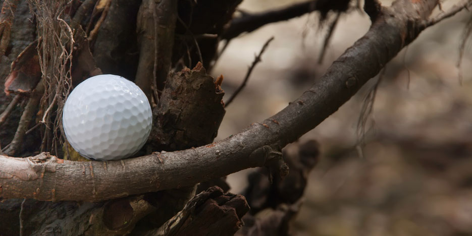 Golf ball stuck in tree. What to do?